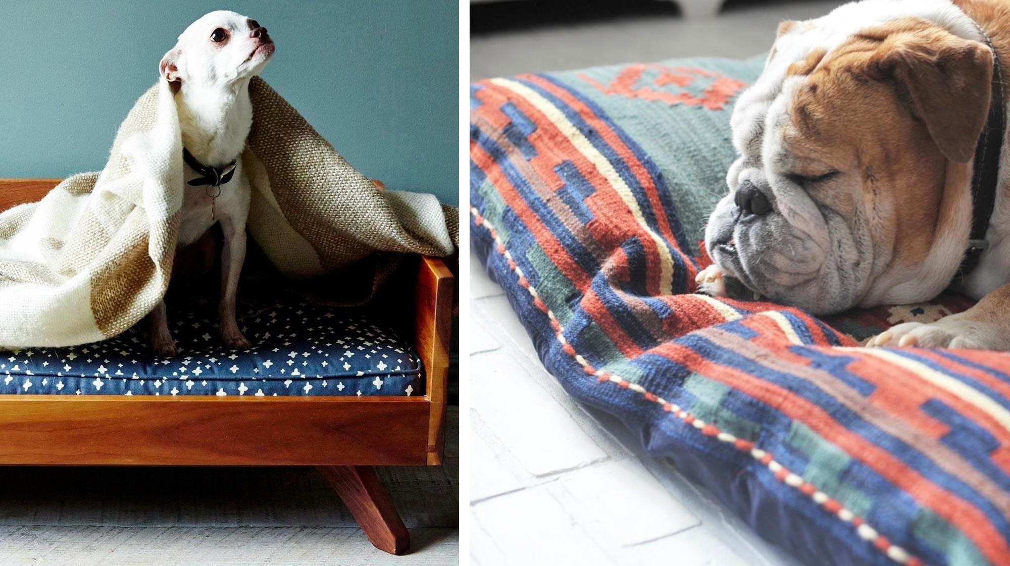 16 hundsängar som är den snyggaste detaljen i hela rummet