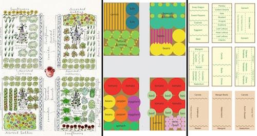 Tre olika kökväxtplaner – fin, enklare, enklast