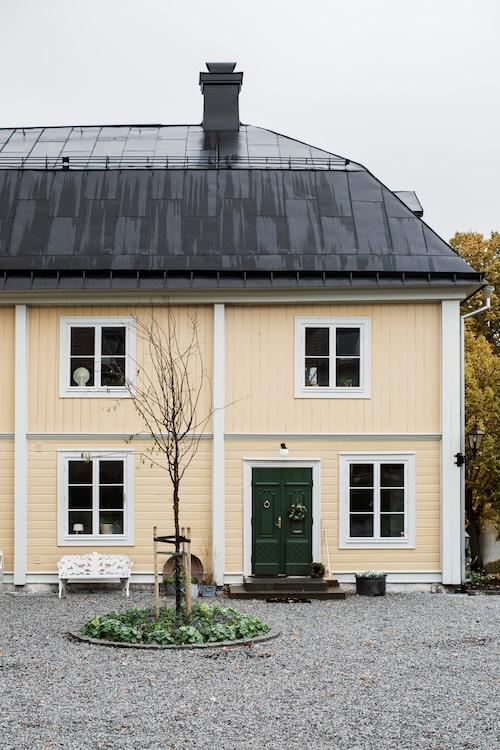 Tellandska gården sträcker på sig och njuter av kärleken den får från familjen Sommestad.