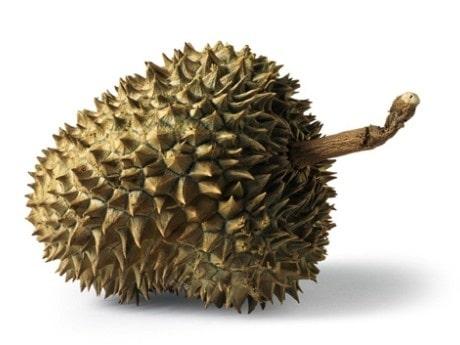 <p>Stinkbomben durian</p>