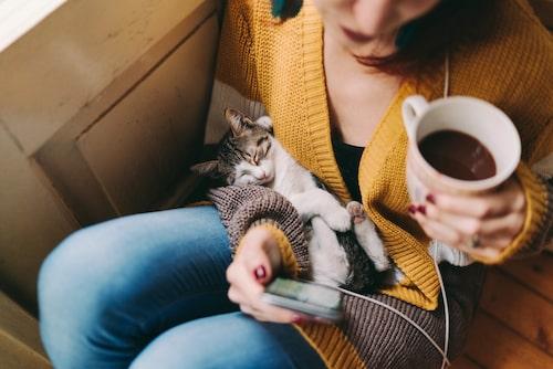 Studier har visat att läsning är väldigt avslappnande.