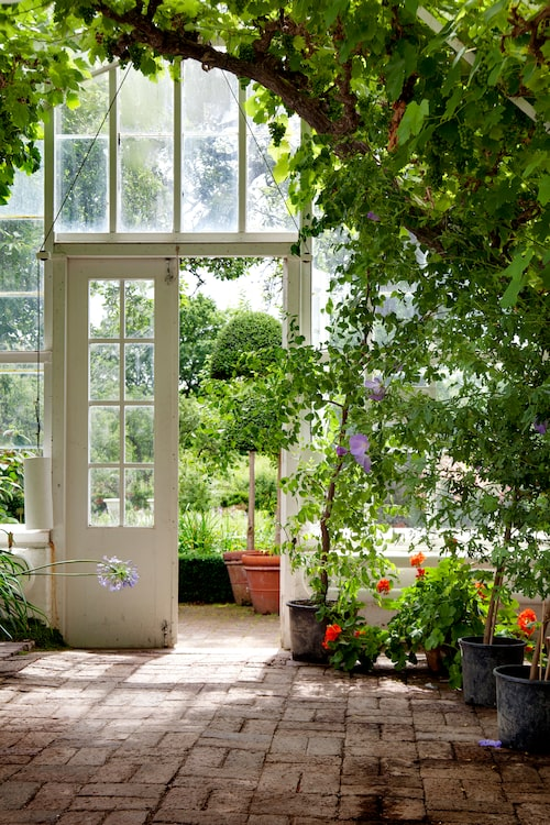 Först måste du fråga dig vad som är syftet med växthuset. Odla, mysa eller både och?
