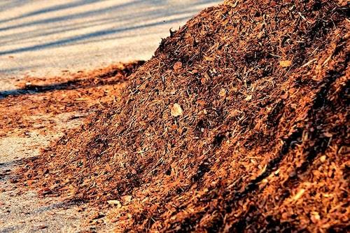Det är skillnad på täckbark och barkmull. Täckbark är grövre och läggs på ytan, barkmull har gått längre i förmultningsprocessen, är svart och har näringsberikats.