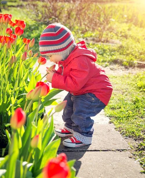 Låt barnen vara ute och leka så mycket som möjligt. Men var uppmärksam på symptom på pollenallergi. Det finns bra behandling att få.