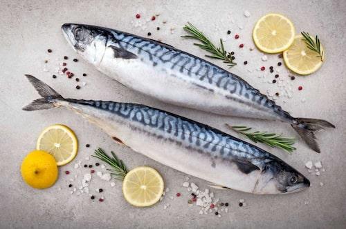 Ge gärna fisk tidigt, så att ditt barn vänjer sig vid smaken. Foto: Shutterstock.