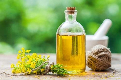 Rapsolja är ett bra sätt för vegetarianser att få i sig de korta omega-3-fettsyrorna. Foto: Shutterstock.