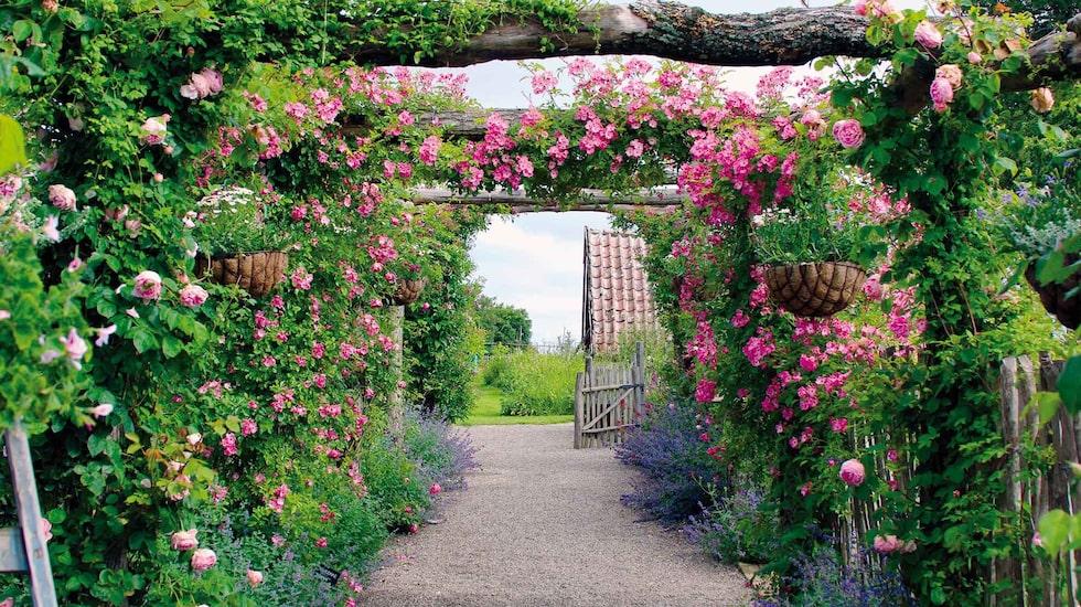 Den Engelska Trädgården