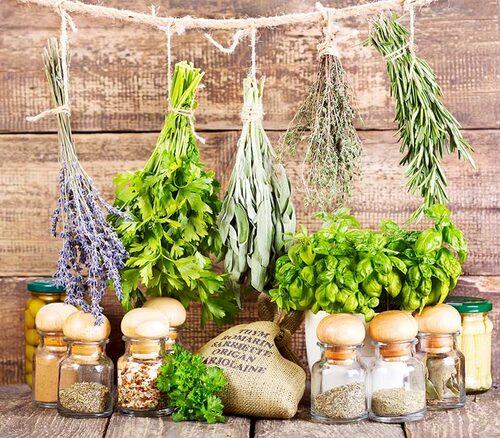 Förvara torkade kryddväxter mörkt, torrt och svalt. Om du inte har mörka burkar, ställ in i skafferiet.