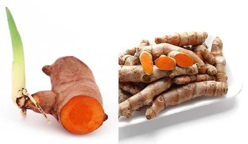 Gurkmeja går att odla på samma sätt som ingefära.