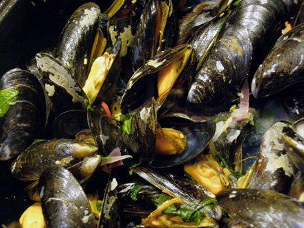 Säsong för musslor