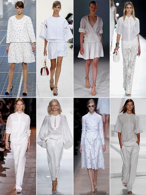 Chanel, Chloé, Hussein Chalayan, Roberto Cavalli Stella McCartney, Diane Von Furstenberg, Valentino, Lacoste