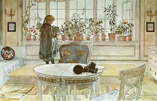 På akvarellen från 1894 vattnar Suzanne blommorna i det breda fönstret. Hon står uppe på podiet som då ännu inte fått sitt vita räcke.