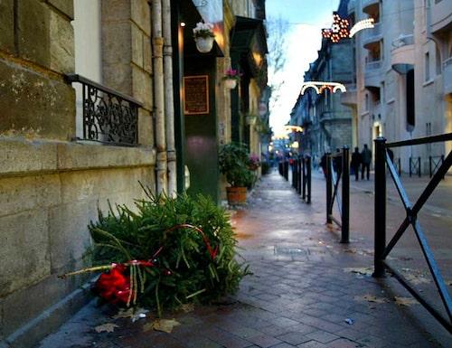 Var slänger man julgranen?