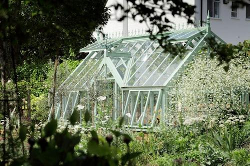 Bild: Vansta trädgård