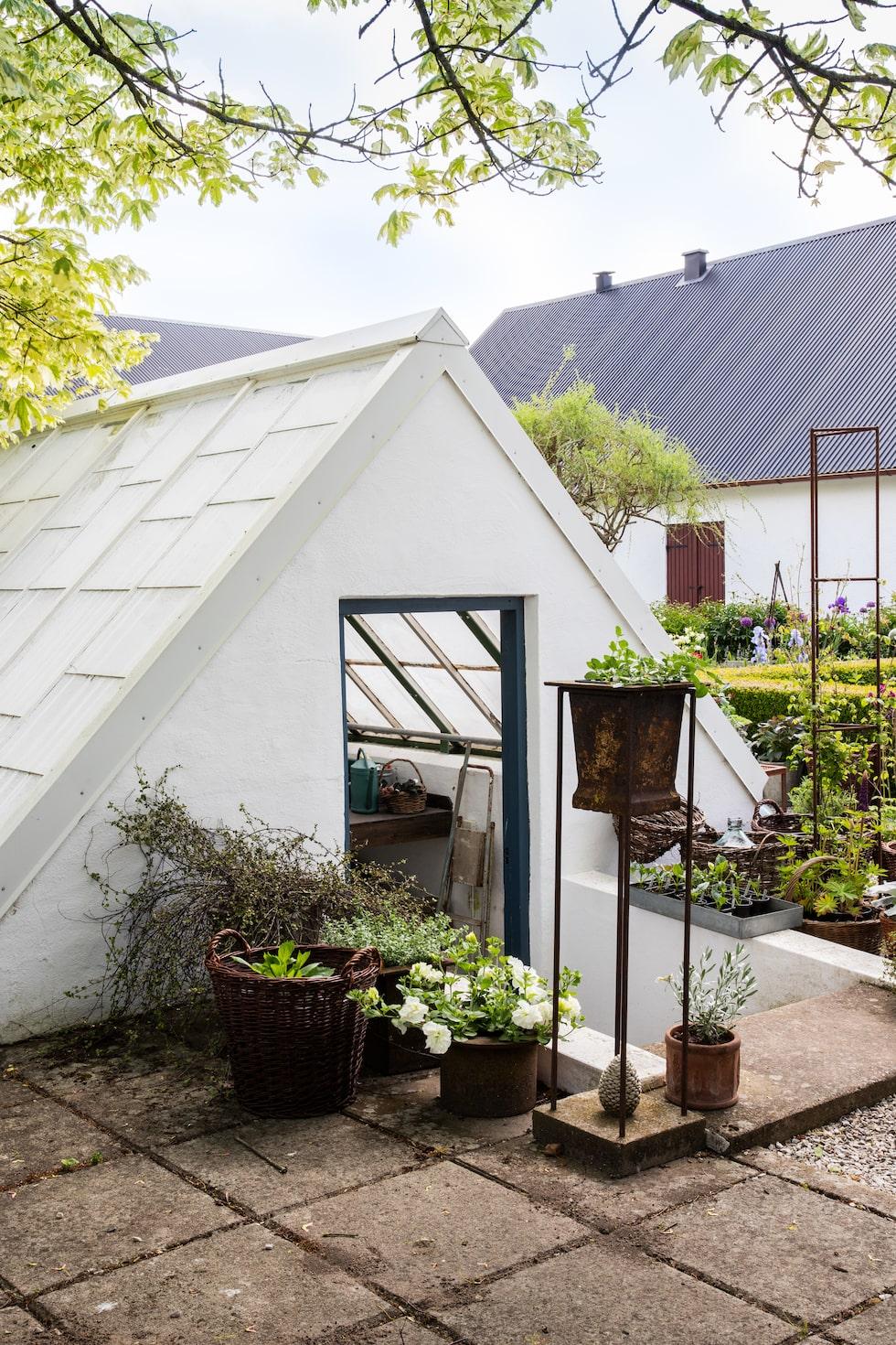 Med växthuset nersänkt 80 centimeter under markytan förbättras klimatet. Marken isolerar - det blir varmare på vintern och svalare på sommaren.