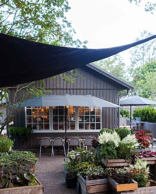 Bli inspirerad av trädgården när du fikar i Katrinelund, Sundsvall.