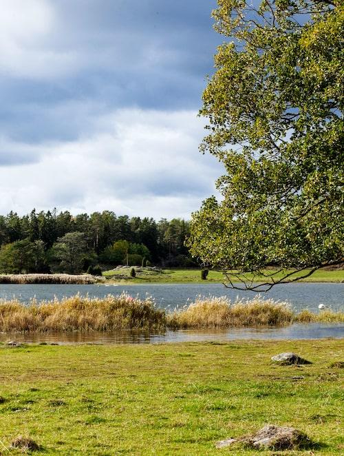 I lummiga Sörmland är det aldrig långt till närmaste sjö.