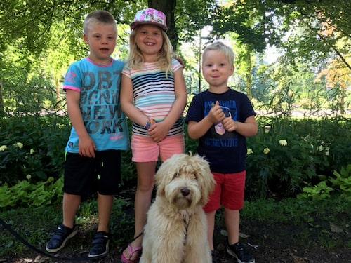 Calle, idag 9 år, med småsyskonen Ebba, 8, och Bruno, 5, samt hunden Bella.