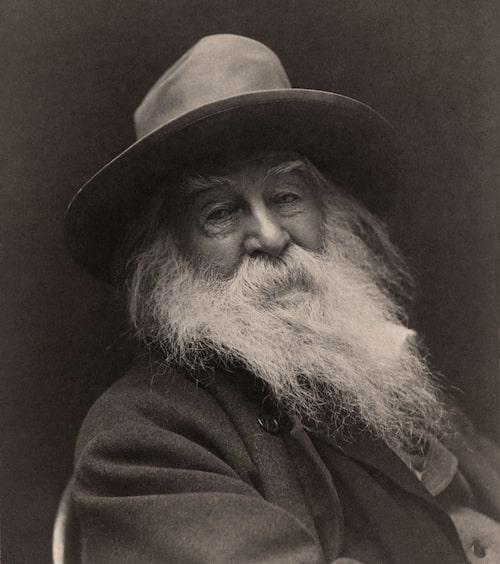 Walt Whitman, 1887.