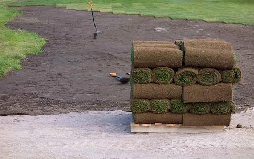 Det kan vara värt att satsa på en färdig gräsmatta på rulle, men man får inte fuska med förarbetet.