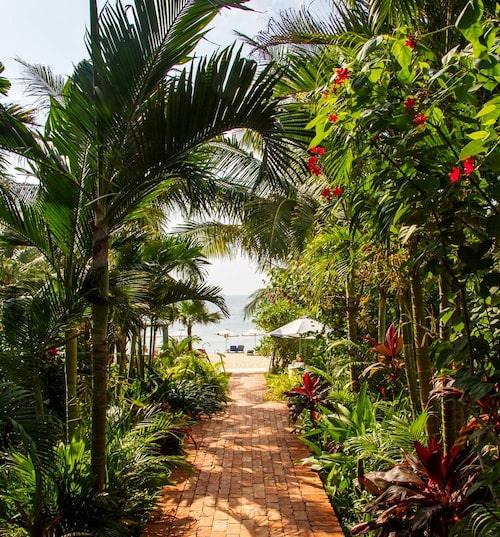 På Phu Quoc börjar det nu byggas flera stora hotell för att kunna ta emot soltörstande turister, men det är fortfarande lugnt och vardagslivet som dominerar.