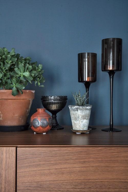 Växter, keramik och brunt glas är vackert mot den mörka väggen.