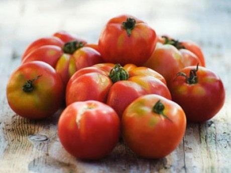 <p>Tomater passar perfekt p&aring; sm&ouml;rg&aring;sen.</p>