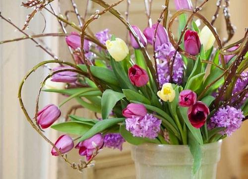 Tulpaner med lila hyacinter och videkvistar
