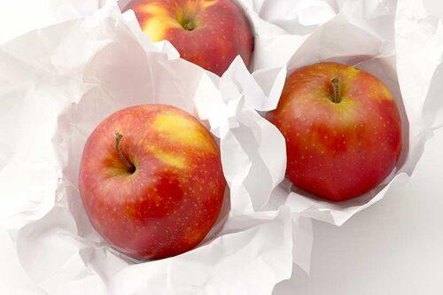 Äpplen ska förvaras mörkt, svalt och luftigt. Temperaturen bör ligga mellan 2-5 °C, luftfuktigheten på 85-90 procent.