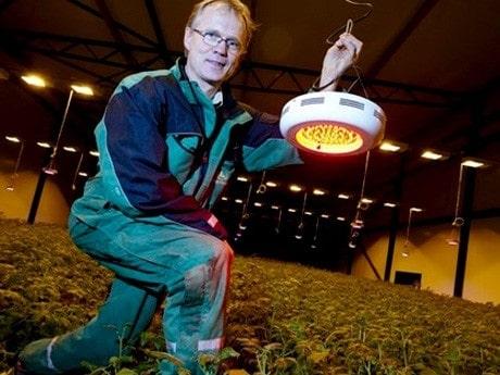"""<p>FRAMTIDENS MELODI Med ny belysningsteknik hoppas odlaren Patric Torle i &Auml;ngelholm kunna sk&ouml;rda f&auml;rskpotatis &aring;ret runt. &quot;Redan till ny&aring;r kommer vi att leverera f&auml;rsk potatis igen&quot;, s&auml;ger han.<span class=""""byline""""><br /> </span></p>"""