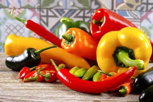 Odla egna chilisorter som är svåra att hitta i handeln.