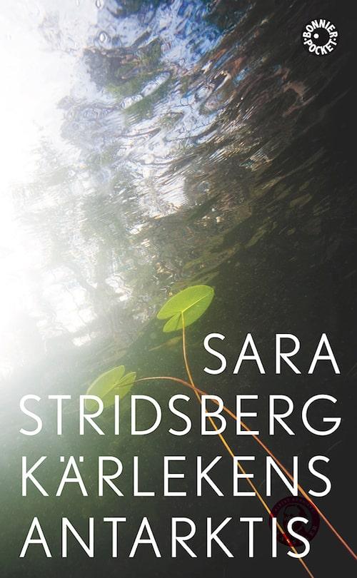 Kärlekens Antarktis av Sara Stridsberg.