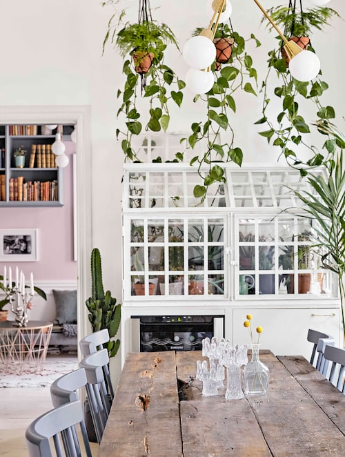 """Växthuset är Eriks baby. Han hade suktat efter det ett tag, och fick köpa det med rabatt av Brandstationen då någon köpt, men lämnat tillbaka det. """"Få växter överlever i det men kaktusar funkar fint."""" Under växthuset finns en vinkyl. Bordet har Erik gjort av brädor från en vägg som paret rev i deras förra lägenhet. Stolar från Stalands, glasljusstakar, Orrefors och i taket sputniklampa, Domino antik."""