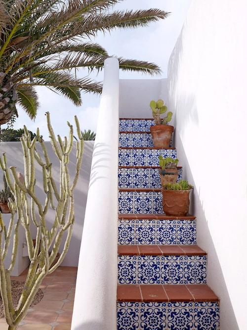 Den kaklade trappan leder till takterrassen.