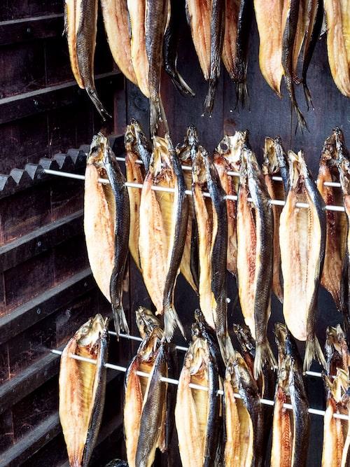 Njut av rökt fisk på Rödlöga.