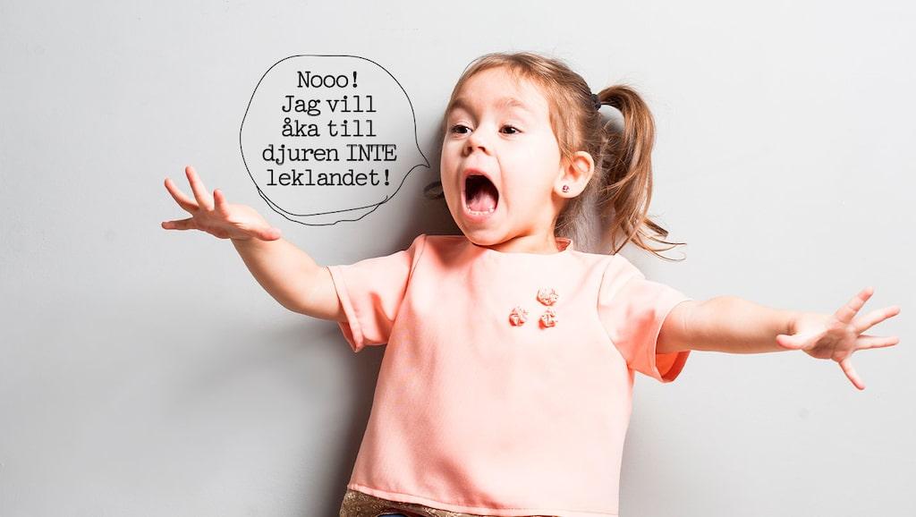 Hur ska man bemöta en bestämd 4-åring?