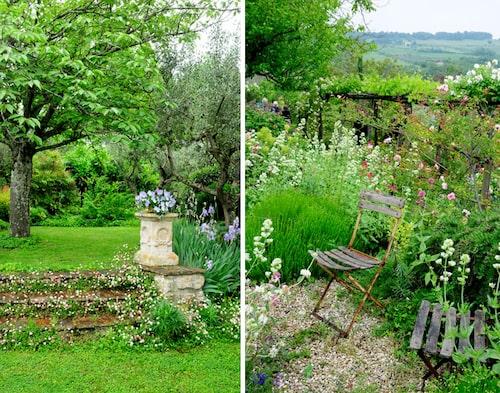 Underbara rum i Lizzas trädgård