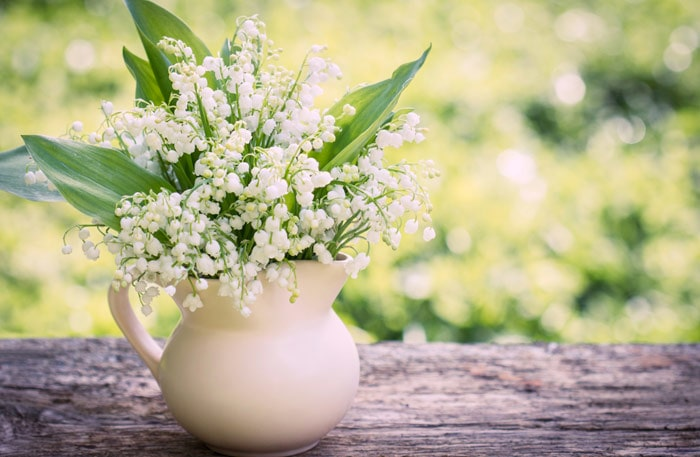 Liljekonvalj heter Lily of the Valley på engelska.