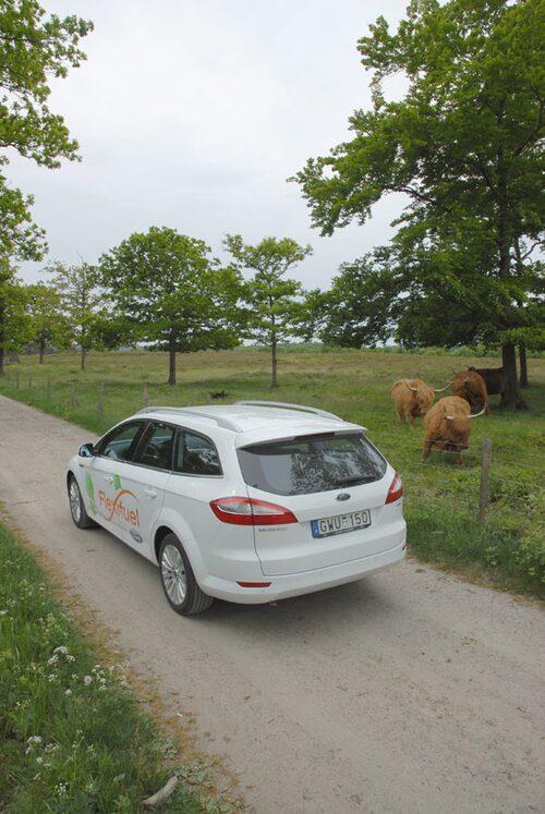 Senast tvålade Mondeo kombi till Renault Laguna och Mazda 6, men även Volvo V70 har fått gå av planen som förlorare.