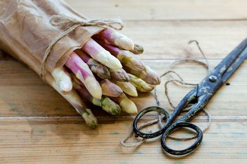 Vit sparris får man från att kupa vanlig grön sparris. Skott som inte får ljus blir bleka.