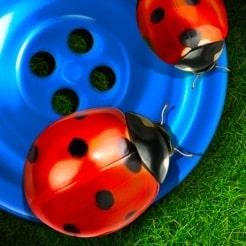 Ett pedagogiskt spel när det är som bäst: kreativt, snyggt och underhållande.