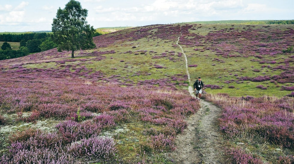Blåvingeleden på Österlen är en av Skånes finaste vandringsleder.