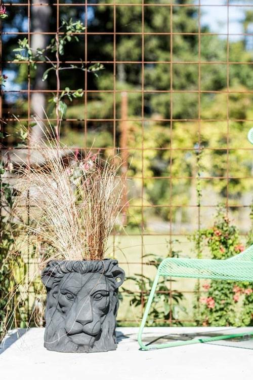 Lejonkruka från Garden glory, som gör roliga och glammiga trädgårdsprylar.