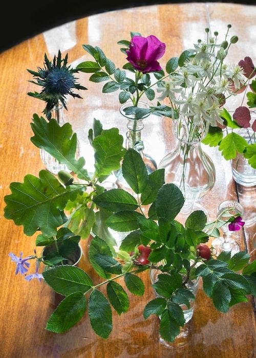 Blommor från trädgården i vaser, silverbägare och gamla glas. Tistel, vresrosor, klematis och kvistar med ekollon på.