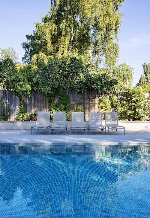 """Trädgården med pool är gemensam för de tre lägenheterna i huset. """"Vi har bestämt oss tillsammans för att ha en trädgård som vi inte behöver pyssla så mycket med."""""""