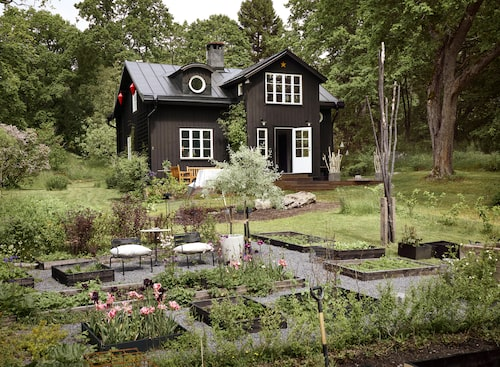 I Kenneths händer har det enkla huset från början av 1900-talet fått en ny stram stolthet. 100 kvm är det totalt. Tomten var bara en gräsmatta, ett vitt blad där Kenneth skissade upp en stilig, stram trädgård.