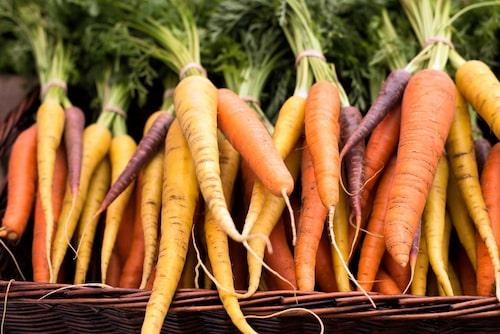 Det finns många olika morotssorter tidiga och sena, med varierande former och färger.