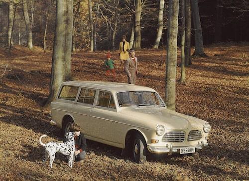 Amazon P220 Kombi var en elegant bil som aldrig fick något folkligt genomslag. Den accepterades däremot som ett exklusivt komplement till den stryktåliga Duetten som fortfarande ansågs överlägsen som okomplicerat tran- sportverktyg.