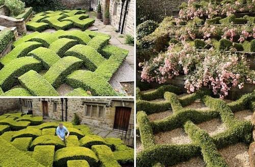 Knot gardens med flätad buxbom.