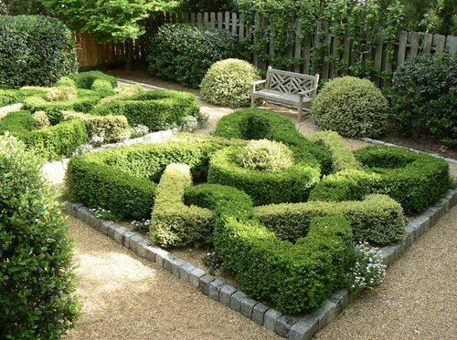 Knot garden efter Rosemary Vereys design.